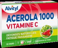 Govital Acerola 1000 à SOUILLAC