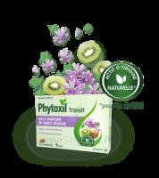Phytoxil Transit Comprimés B/20 à SOUILLAC