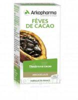 Arkogélules Cacao Gélules Fl/45 à SOUILLAC