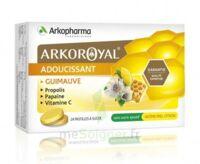 Arkoroyal Propolis Pastilles Adoucissante Gorge Guimauve Miel Citron B/24 à SOUILLAC