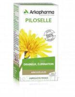Arkogélules Piloselle Gélules Fl/45 à SOUILLAC