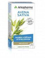 Arkogélules Avena Sativa Gélules Fl/45 à SOUILLAC
