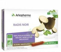 Arkofluide Bio Ultraextract Radis Noir Solution Buvable 20 Ampoules/10ml à SOUILLAC