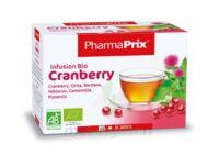 Infusion Bio Cranberry à SOUILLAC