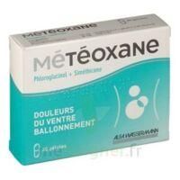 Meteoxane Gél Plq/30 à SOUILLAC