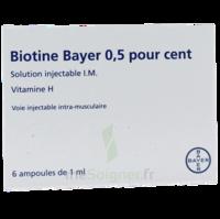 Biotine Bayer 0,5 Pour Cent, Solution Injectable I.m. à SOUILLAC
