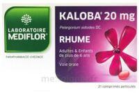 Kaloba 20 Mg Comprimé Pelliculé Plq/21 à SOUILLAC