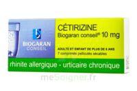 Cetirizine Biogaran Conseil 10 Mg, Comprimé Pelliculé Sécable à SOUILLAC