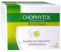 Chophytol Cpr Enr 6plaq/30 à SOUILLAC