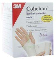 Coheban, Blanc 3 M X 7 Cm à SOUILLAC