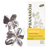 Pranarom Huile Végétale Bio Calophylle 50ml à SOUILLAC