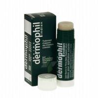 Dermophil Indien Pom Stick Girex/30g à SOUILLAC