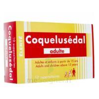 Coquelusedal Adultes, Suppositoire à SOUILLAC