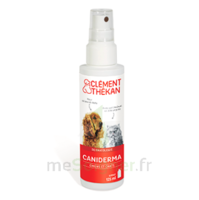 Clément Thékan Caniderma Solution Externe Cicatrisant Spray/125ml à SOUILLAC