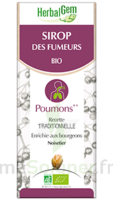 Herbalgem Sirop Bio Des Fumeurs 150ml à SOUILLAC
