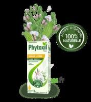 Phytoxil Toux Sans Sucre Sirop Adulte Enfant +2 Ans Fl/120ml à SOUILLAC