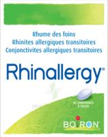 Boiron Rhinallergy Comprimés B/40 à SOUILLAC