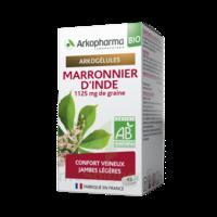 Arkogélules Marronnier D'inde Bio Gélules Fl/45 à SOUILLAC